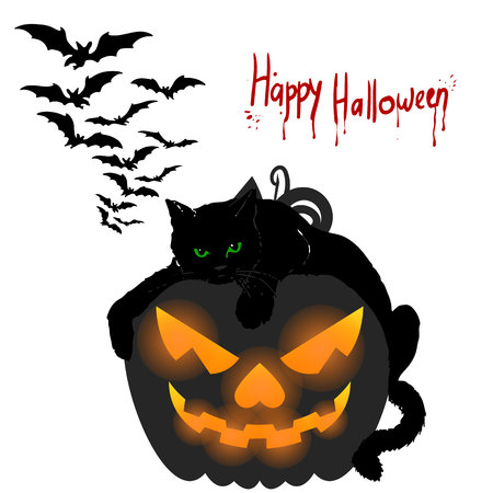 calabaza caricatura: Holiday Halloween. Black cat lies on a pumpkin, cartoon on a white background.Vector.