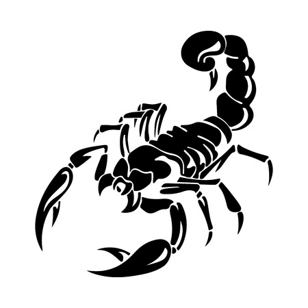 Silhouette of black scorpion, on white background, vector