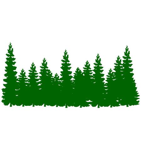Pine tree forest vector Vettoriali