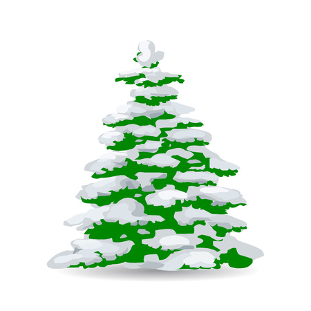 Green Christmas tree covered with snow, cartoon on white background, vector