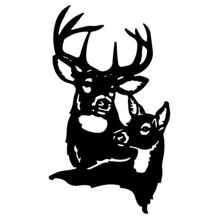 Couple of deer (male deer and female deer) on white background, vector
