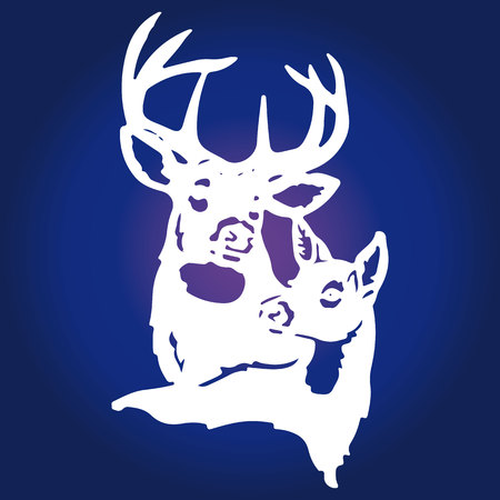A pair of white deer (male deer and female deer) on a blue background, vector
