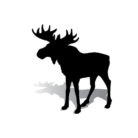 Silhouette of an elk with beautiful horns, a herbivore on a white background, vector