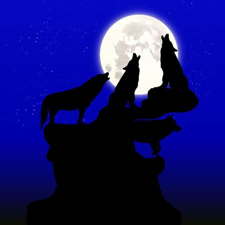 Night illustration, A herd of wolves howling at the moon, on top of a mountain, silhouette on a blue background and stars, vector Çizim
