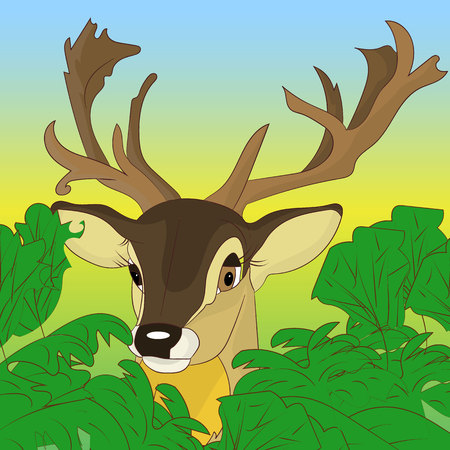 Head of a deer peeking out of green bushes in the forest, cartoon on a natural background, vector