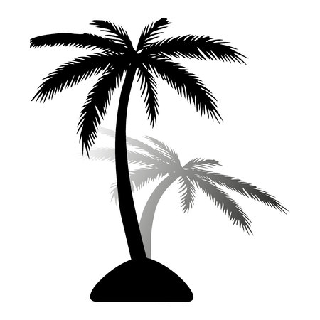 Island. Black silhouette of palm tree, with shadow on white background, vector