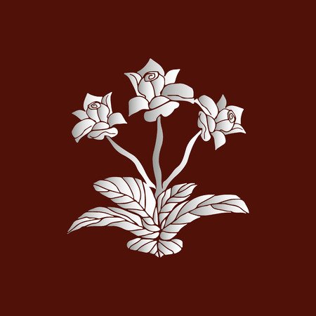 Indoor flower of white gradient on brown background, vector