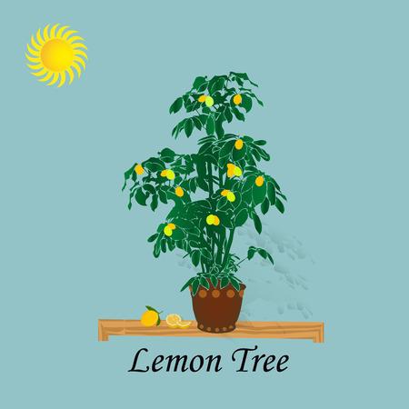 Illustration lemon tree on a light blue background and sun, cartoon-vector Illustration