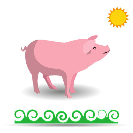 Pink Pig, cartoon on white background, vector