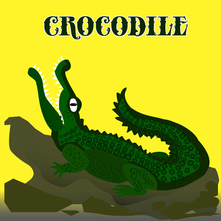 Dark green crocodile with open mouth looking up, cartoon on yellow background, vector
