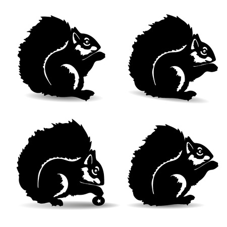 Set of silhouette squirrels, decoration for design, vector