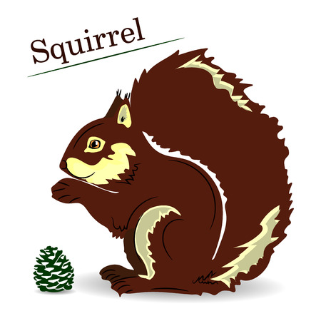 Brown cartoon squirrel on a white background, object for design, vector