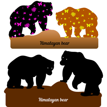 Collection of walking bear, silhouette and silhouette with pattern for design (brown and black), on a white background, vector
