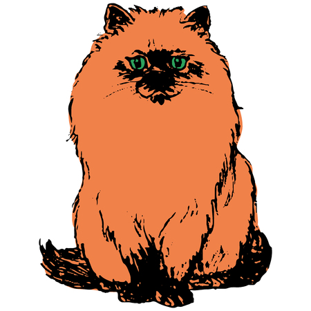 Character Redhead cat sitting, on a white background, close-up, vector