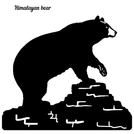 Silhouette of a bear on a hill, raised a paw, on a white background, vector Ilustração