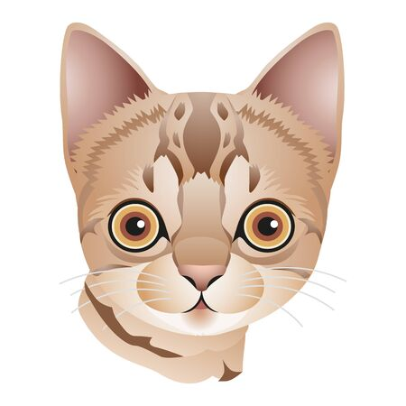 Head of a light brown kitten with big eyes, cartoon on white background, vector