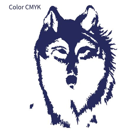 Silhouette sketch for tattoo, wolf head on a white background, color CMYK, vector
