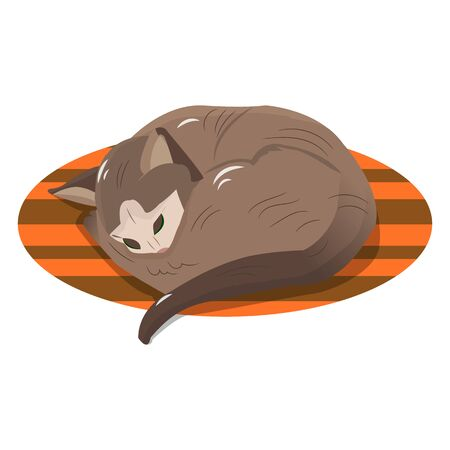 Character, brown cat sleeping on the rug, object on a white background, vector 일러스트