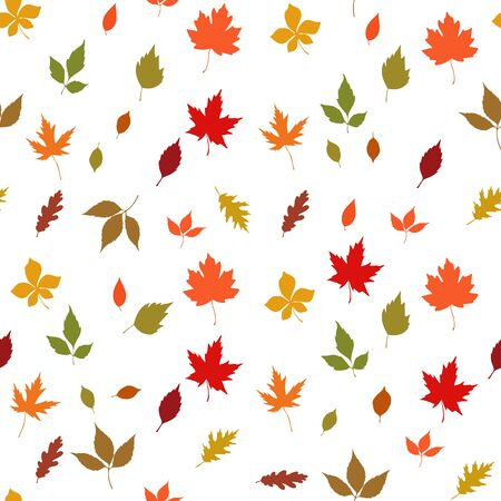Autumn leaves seamless pattern on white background, vector