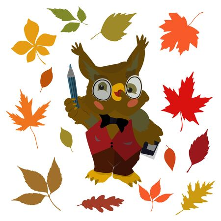 Cartoon character owl teacher, and autumn leaves in September, on a white background, vector
