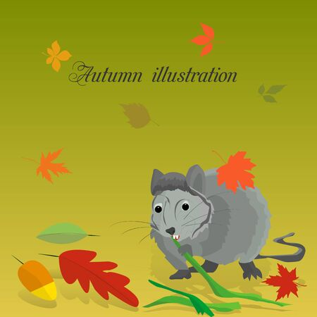 Gray rat nibbles on bamboo in autumn, fall leaves,  Reklamní fotografie
