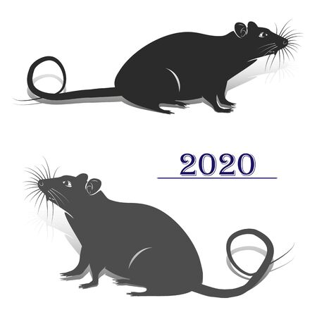 Two gray rats, silhouette for the design of the new year 2020, on a white background, vector