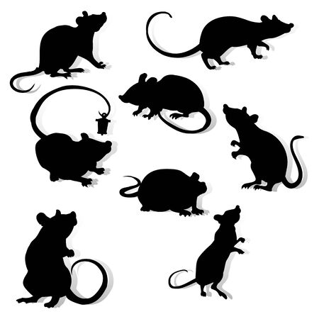 Collection of black silhouettes, year of the rat. Decoration for 2020 Chinese year of the rat, on a white background, vector