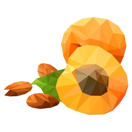 Apricots, triangulation, on a white background low poly object, vector