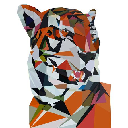 Tiger low poly illustration, closeup triangulation on white background, vector