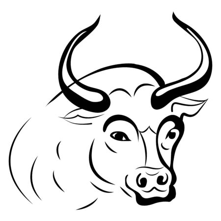 Silhouette bull head (taurus), close up on a white background, vector