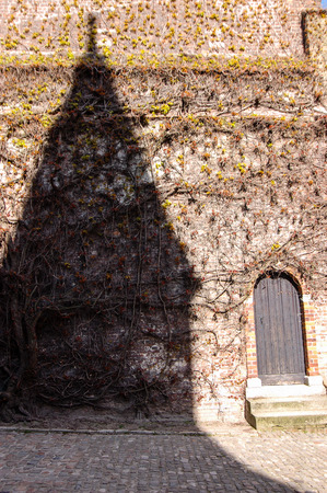 The shadow of a gable house on the brick wall partly covered with ivy and a wooden door beside, on a cobblestone street in Bruges, Belgium on sunshine day.