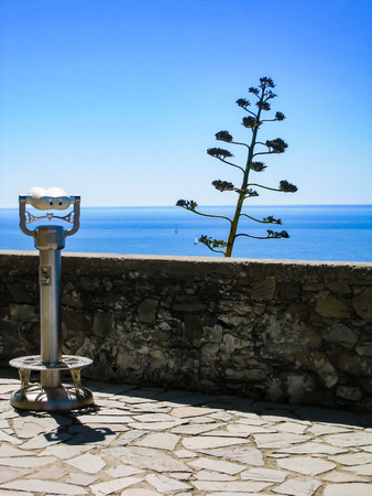 A binocular, stone wall, an outstanding tree at viewpoint in Corniglia, a fisherman village of Cinque Terre in Italy, overlooking the bright blue Ligurian sea and faraway horizon in blue sky on sunny day.