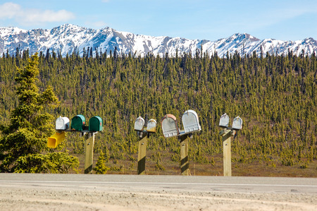 alaska scenic: Row of mailboxes along sideways of scenic route in Alaska with green taiga forest and snow mountain on background in blue sky on sunshine. Stock Photo