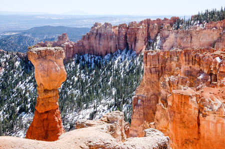 hoodoo: Scenery of the outstanding hoodoo, red rock formations, among snow in green forest backdrop at Agua Canyon overlook of Bryce Canyon National Park in Utah on sunshine in horizontal view.