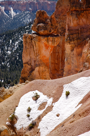 natural bridge: The vertical view of the hoodoos, red rock formations, and snow in foreground with green forest backdrop at Natural Bridge Overlook of Bryce Canyon National Park in Utah on sunshine.