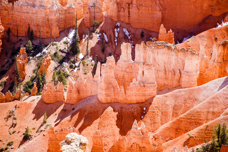 Hoodoos close-up with little snow and green tree at Sunrise Point in Bryce Canyon National Park, Utah, with sunshine.