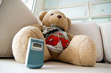 Teddy bear sitting on the white sofa with a blue mobile phone in the decorated living room of the middle-class condominium located in the heart of Bangkok.