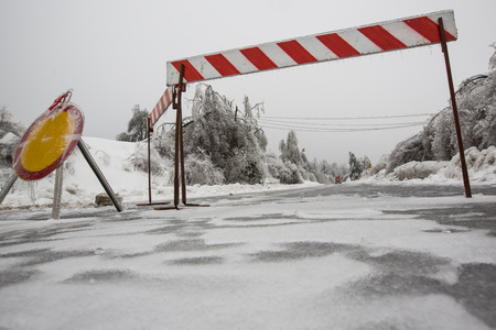 Road closed for ice with fallen trees in background photo