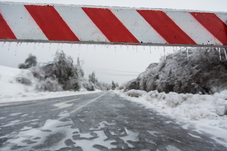 road closed: Road closed for ice with fallen trees in background