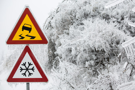 sleet: Dangerous and icy road with sleet covered trees