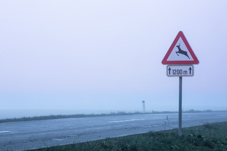 Traffic sign for deer crossing in fog on a desolate road photo