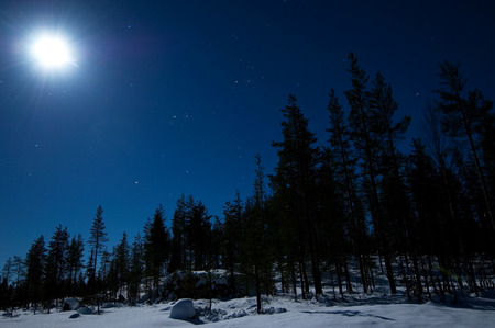 Night winter scene with full moon and starry sky photo