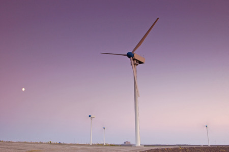 power in nature turbine: Wind turbine farm with purple sky and moon