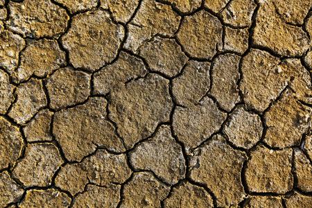 Dry arid soil with cracks photo