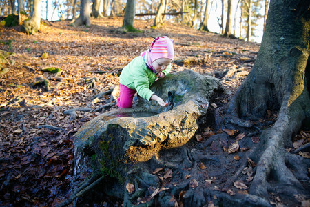water source: Adorable, thirsty little girl drinking clean spring water from a source in a forest Stock Photo