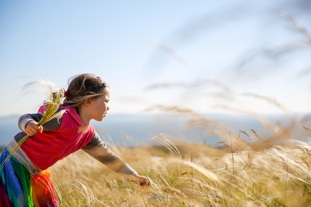 hypersensitivity: Cute little girl picking and gathering brown grasses on a meadow with the wind blowing through her long hair and sea . Allergy, hay fever and hypersensitivity concept.