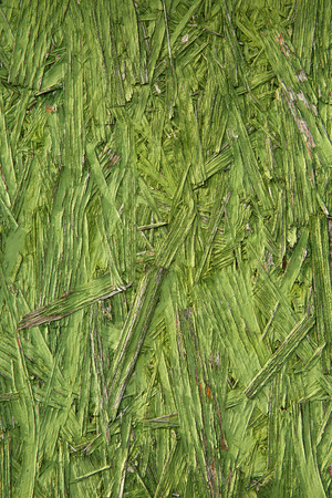 disarray: Green colored, unique and uniform textured abstract background. Nature, environment and envy symbolism and concept. Stock Photo
