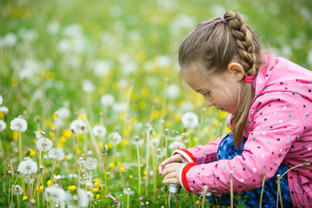 curiosity: Little curious girl photographing up close with her camera, exploring nature and kneeling in a dandelion meadow. Active lifestyle, curiosity, pursuing a hobby concept. Stock Photo