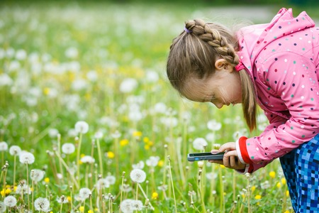 upclose: Little curious girl photographing up close with her smart phone, exploring nature and standing in a dandelion meadow. Active lifestyle, curiosity, pursuing a hobby, technology and kids concept.