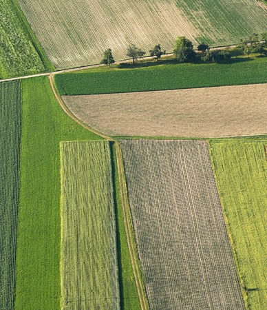 agricultural area: Freshly plowed and sowed farming land from above, neatly cultivated in non-urban agricultural area, textured effect and background. Food production industry, arable land concept.